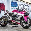 Tem xe PKL - Tem xe Ducati thiết kế Hồng xước