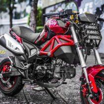 Tem xe PKL - Tem xe Ducati thiết kế Pitbull đỏ
