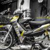 Tem xe Honda Wave - 015 - Tem xe thiết kế Falken vàng bạc