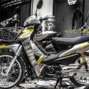Tem xe Honda Wave – 015 – Tem xe thiết kế Falken vàng bạc