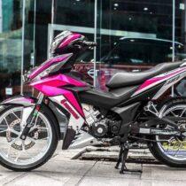 Tem xe Winner - Tem xe Winner thiết kế kiểu Petronas hồng candy