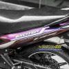 Tem xe exciter 135 Yamaha - Tem xe exciter 135 thiết kế kiểu Titan Dainese