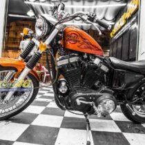 Tem xe Harley Davidson - Tem xe thiết kế cam lửa