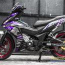 Tem xe Winner 150 – 398 – Tem xe Winner thiết kế Ducati candy tím