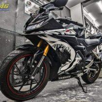 Tem xe Yamaha - Tem xe R15 Cá mập đen trắng